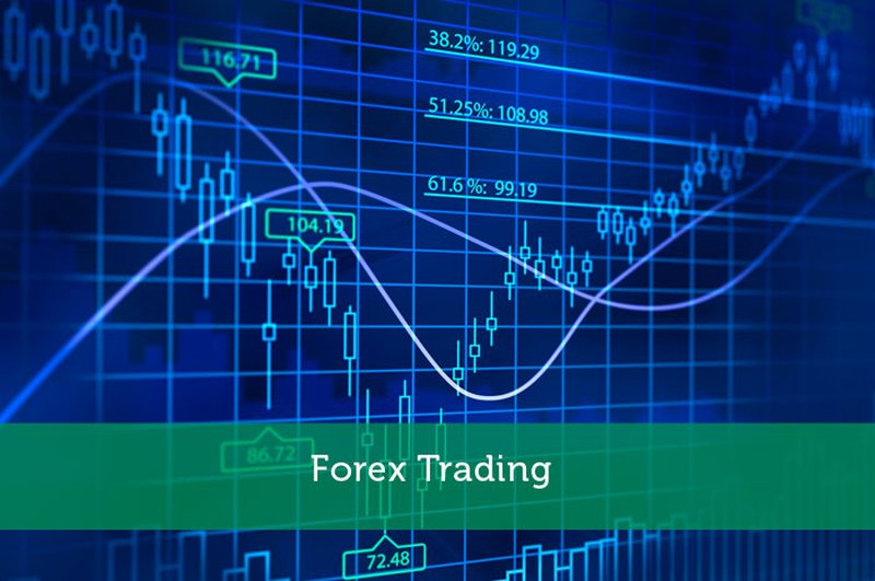 Trading forex si guadagna